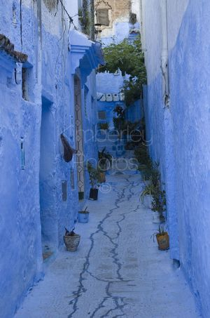 Beautiful cornflower blue streets of Chefchaouen