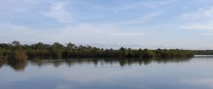 Drysdale-River-c8.jpg